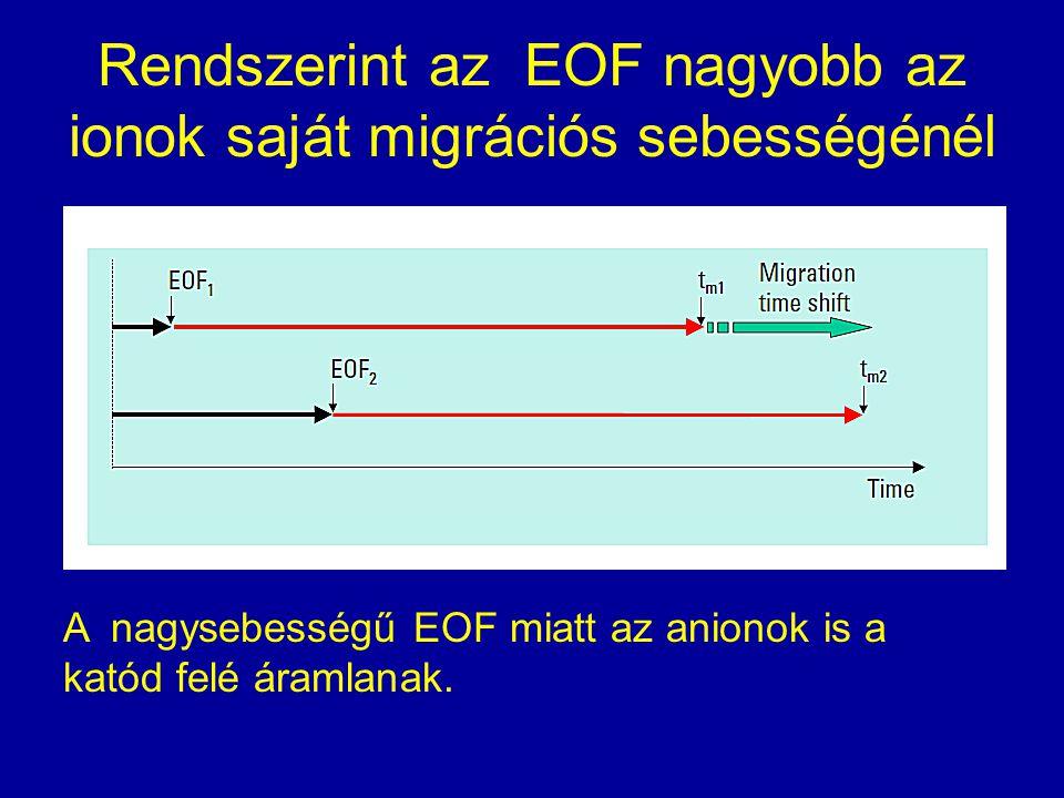 Rendszerint az EOF nagyobb az ionok saját migrációs sebességénél A nagysebességű EOF miatt az anionok is a katód felé áramlanak.
