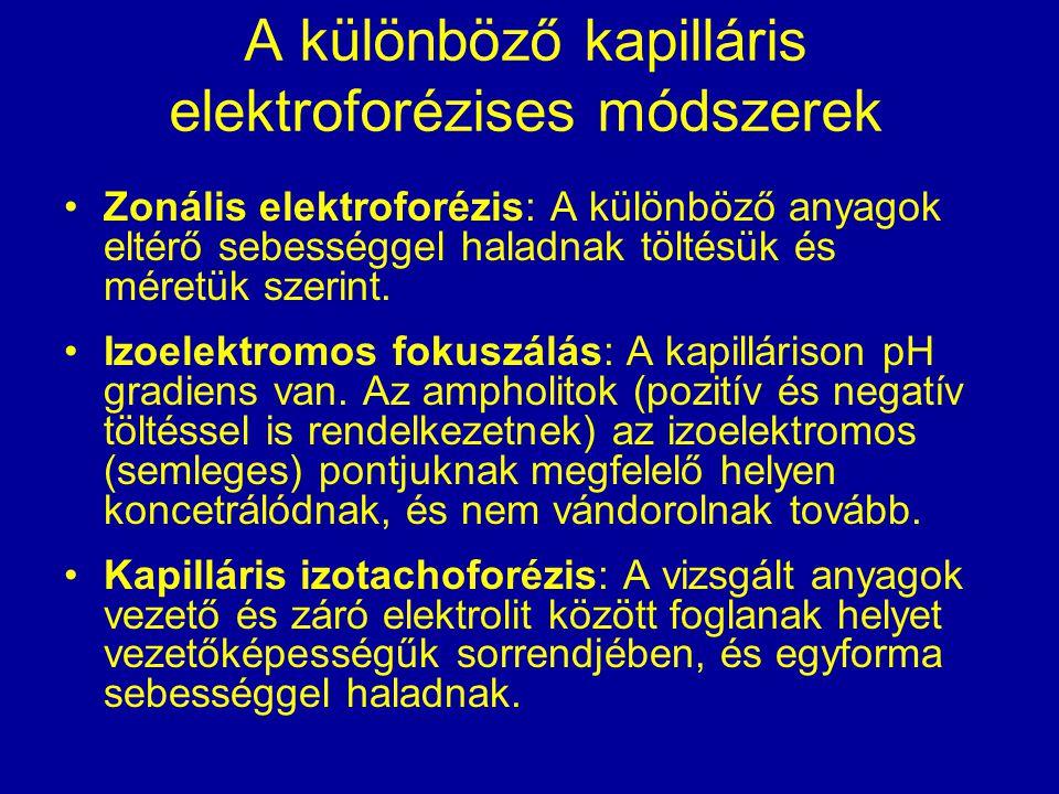 A különböző kapilláris elektroforézises módszerek Zonális elektroforézis: A különböző anyagok eltérő sebességgel haladnak töltésük és méretük szerint.