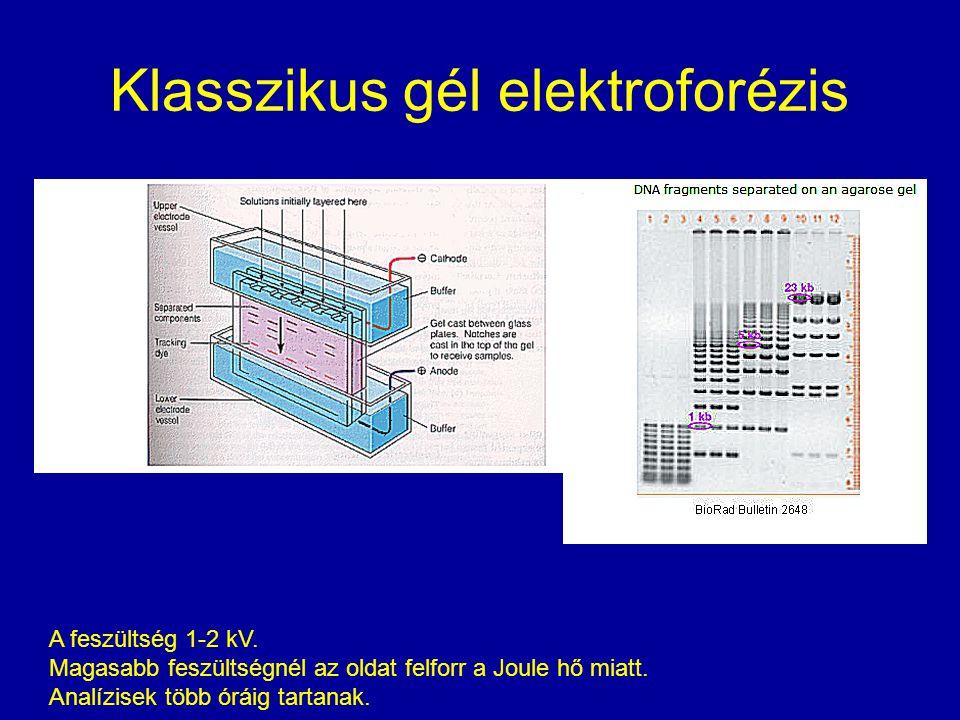 Klasszikus gél elektroforézis A feszültség 1-2 kV. Magasabb feszültségnél az oldat felforr a Joule hő miatt. Analízisek több óráig tartanak.