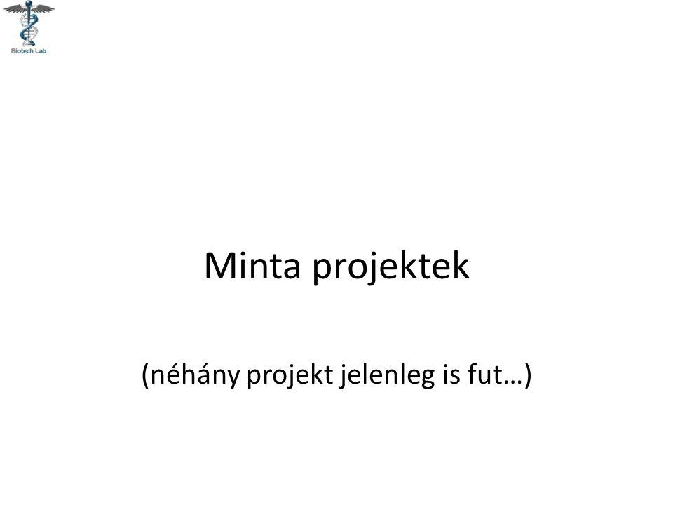 Minta projektek (néhány projekt jelenleg is fut…)