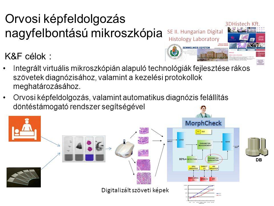 Orvosi képfeldolgozás nagyfelbontású mikroszkópia K&F célok : Integrált virtuális mikroszkópián alapuló technológiák fejlesztése rákos szövetek diagnózisához, valamint a kezelési protokollok meghatározásához.