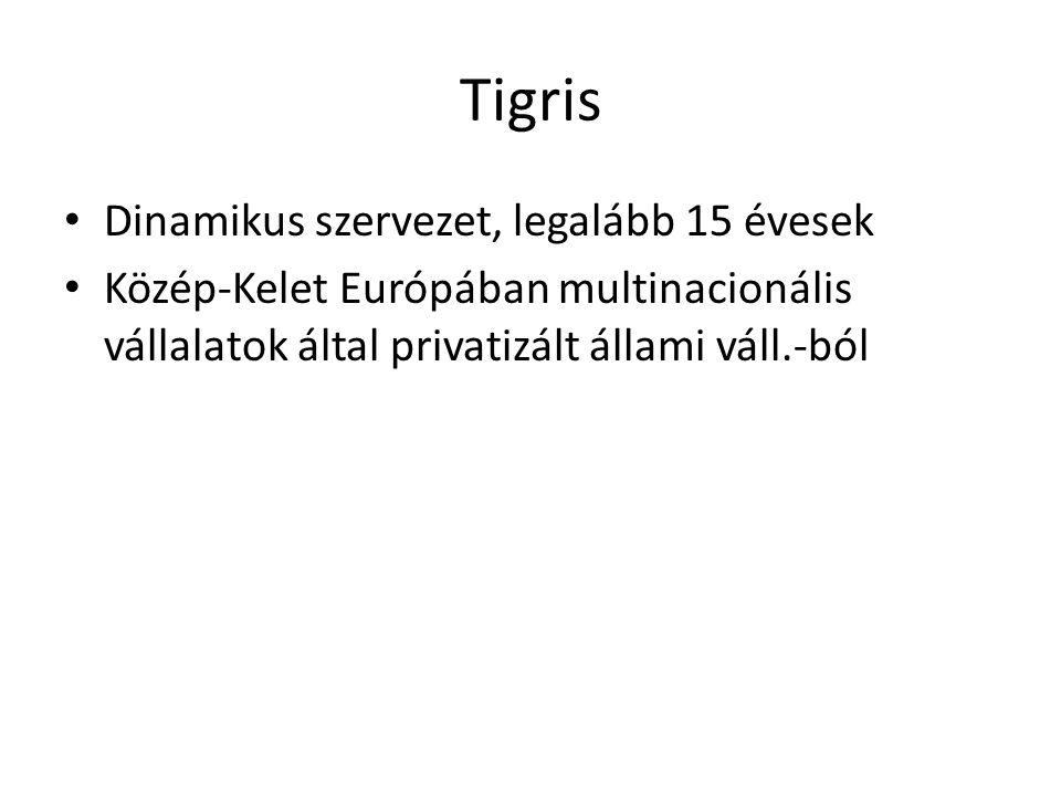 Tigris Dinamikus szervezet, legalább 15 évesek Közép-Kelet Európában multinacionális vállalatok által privatizált állami váll.-ból