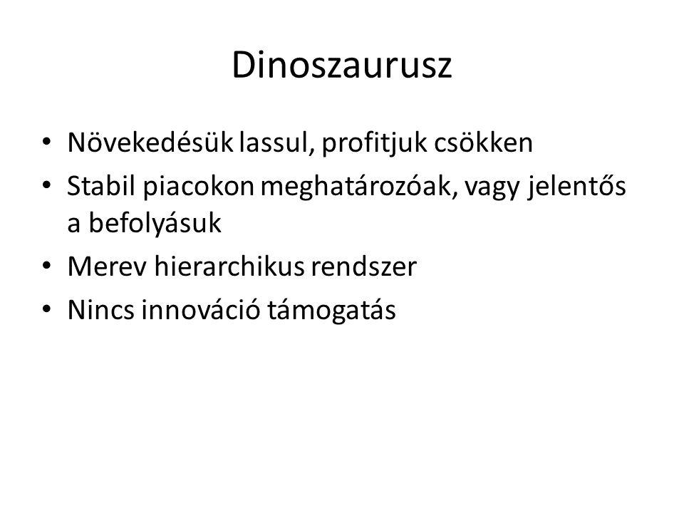 Dinoszaurusz Növekedésük lassul, profitjuk csökken Stabil piacokon meghatározóak, vagy jelentős a befolyásuk Merev hierarchikus rendszer Nincs innovác