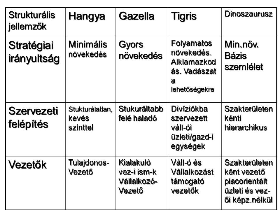 Strukturális jellemzők HangyaGazellaTigrisDinoszaurusz Stratégiai irányultság Minimális növekedés Gyors növekedés Folyamatos növekedés. Alklamazkod ás