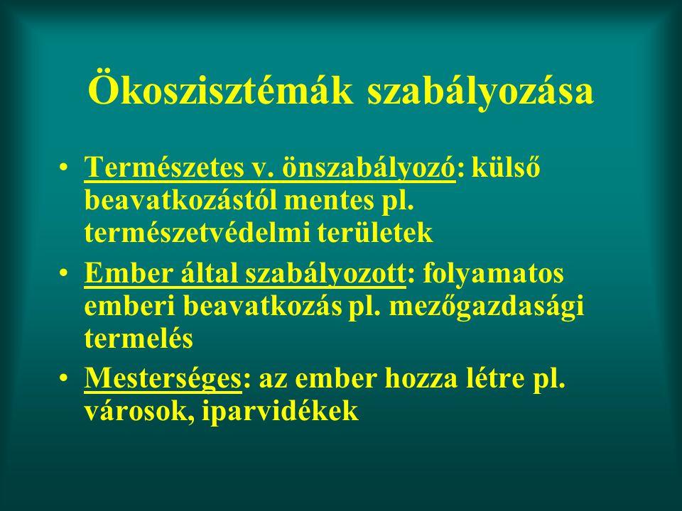 Ökoszisztémák szabályozása Természetes v. önszabályozó: külső beavatkozástól mentes pl. természetvédelmi területek Ember által szabályozott: folyamato