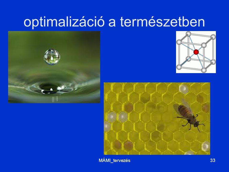 optimalizáció a természetben MÁMI_tervezés33