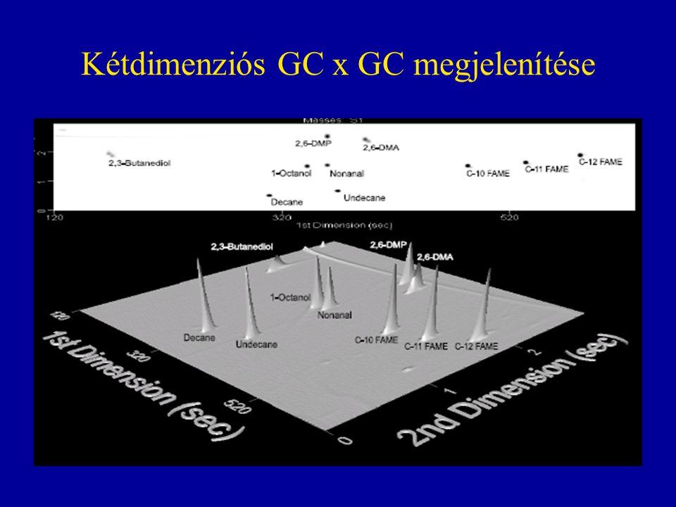 Kétdimenziós GC x GC megjelenítése