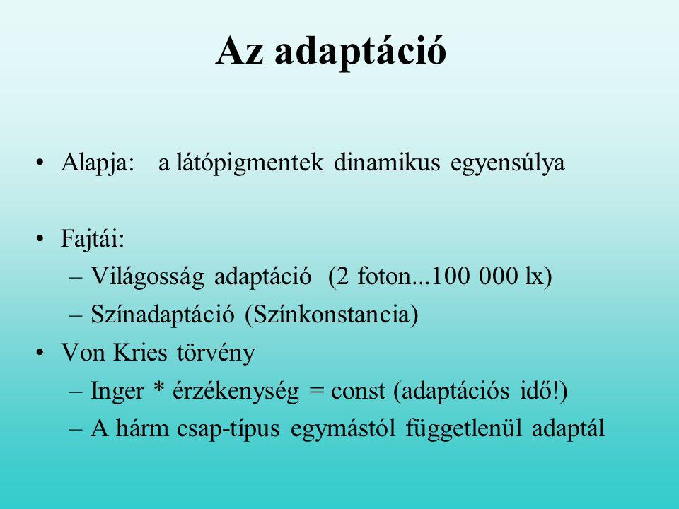 Az adaptáció Alapja: a látópigmentek dinamikus egyensúlya Fajtái: –Világosság adaptáció (2 foton...100 000 lx) –Színadaptáció (Színkonstancia) Von Kri