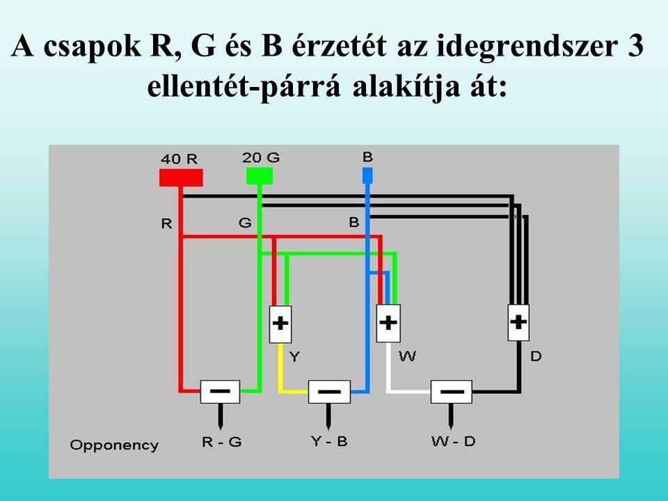 A csapok R, G és B érzetét az idegrendszer 3 ellentét-párrá alakítja át: