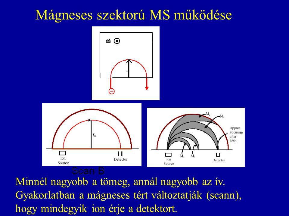 Mágneses szektorú MS működése Minnél nagyobb a tömeg, annál nagyobb az ív. Gyakorlatban a mágneses tért változtatják (scann), hogy mindegyik ion érje