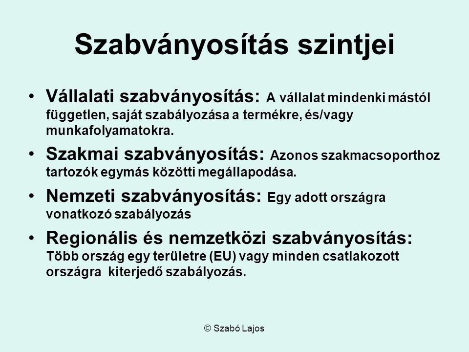 © Szabó Lajos Szabványosítás szintjei Vállalati szabványosítás: A vállalat mindenki mástól független, saját szabályozása a termékre, és/vagy munkafolyamatokra.