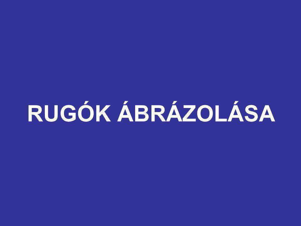 RUGÓK ÁBRÁZOLÁSA