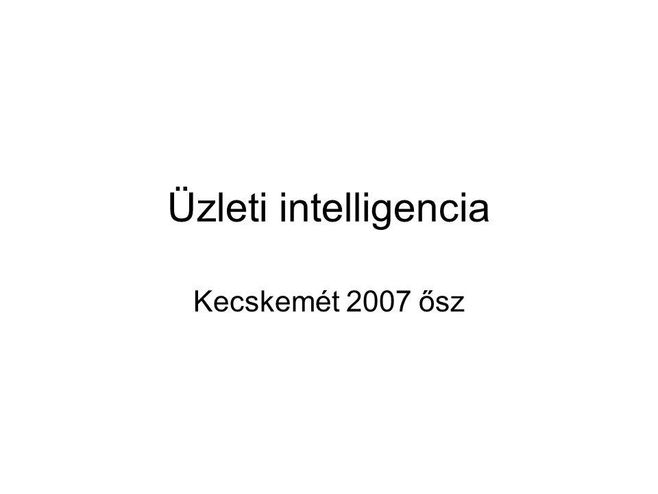 Üzleti intelligencia Kecskemét 2007 ősz
