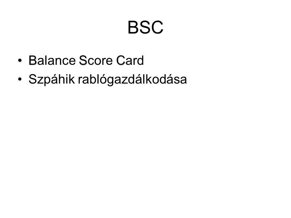 BSC BSCBalance Score Card Szpáhik rablógazdálkodása