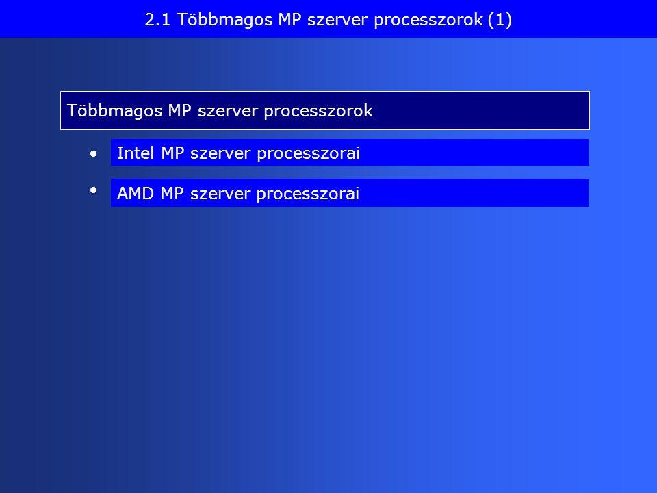 Többmagos MP szerver processzorok 2.1 Többmagos MP szerver processzorok (1) AMD MP szerver processzorai Intel MP szerver processzorai