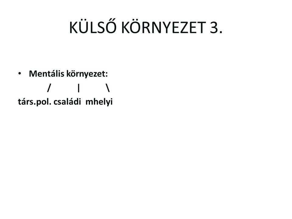 KÜLSŐ KÖRNYEZET 3. Mentális környezet: /|\ társ.pol. családi mhelyi