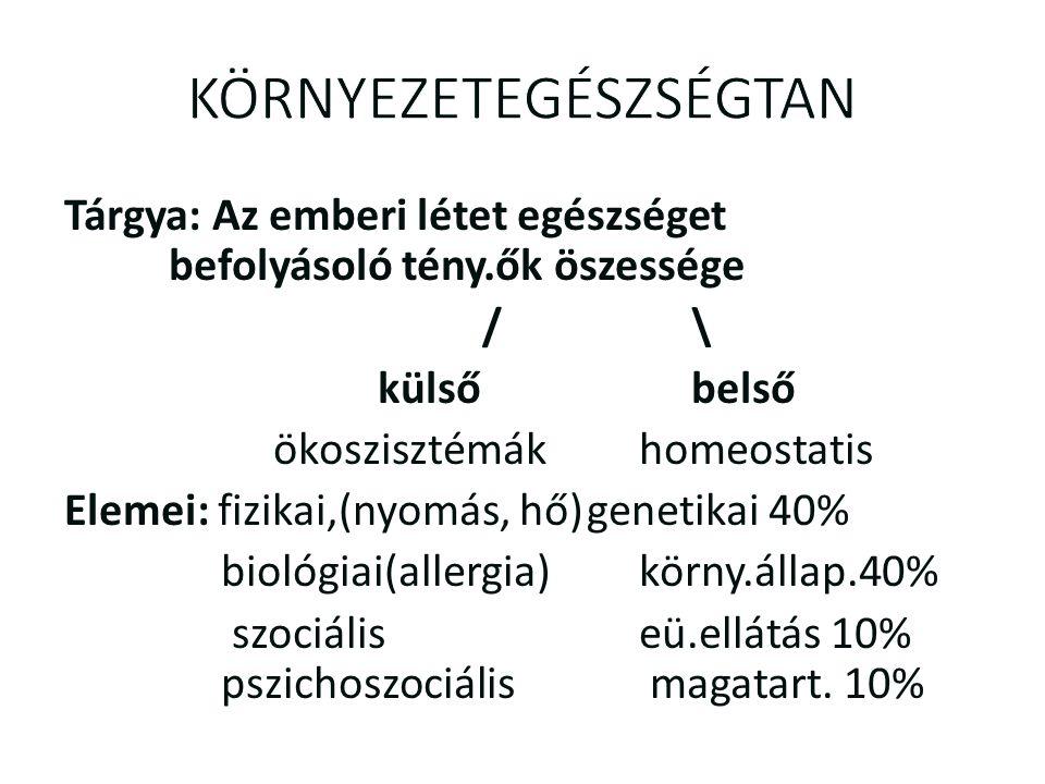 KÜLSŐ KÖRNYEZET 2.