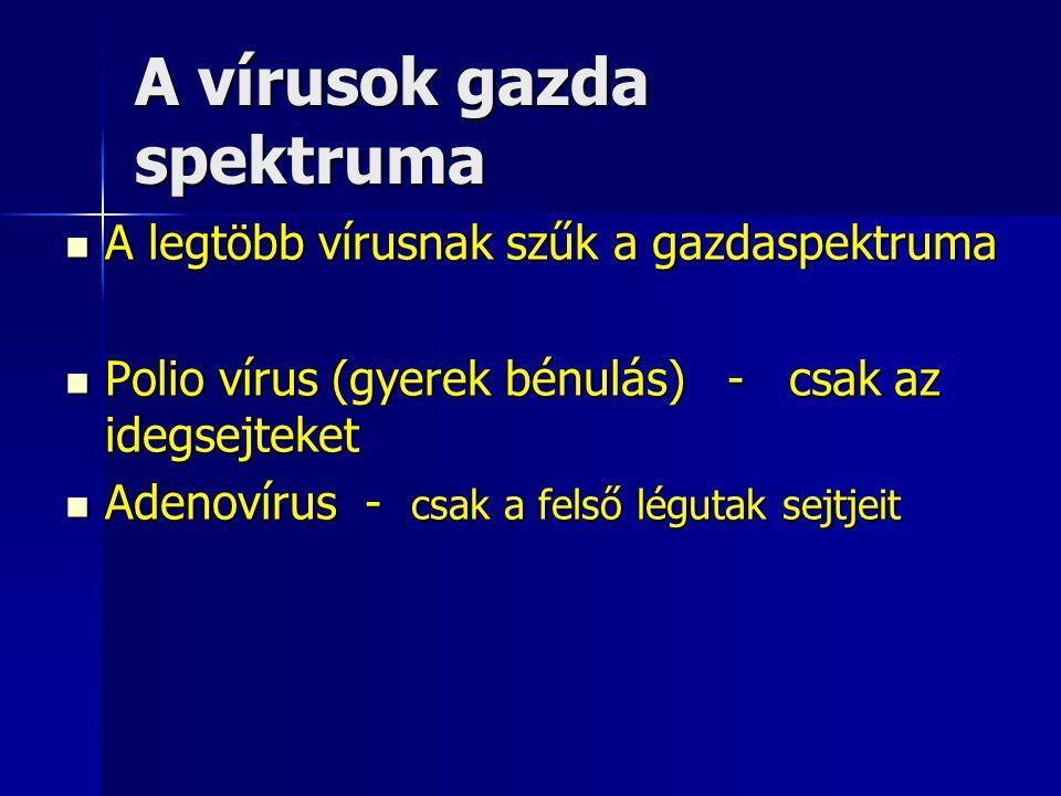 A vírusok gazda spektruma A legtöbb vírusnak szűk a gazdaspektruma A legtöbb vírusnak szűk a gazdaspektruma Polio vírus (gyerek bénulás) - csak az ide