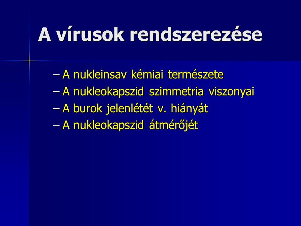 A vírusok rendszerezése –A nukleinsav kémiai természete –A nukleokapszid szimmetria viszonyai –A burok jelenlétét v. hiányát –A nukleokapszid átmérőjé