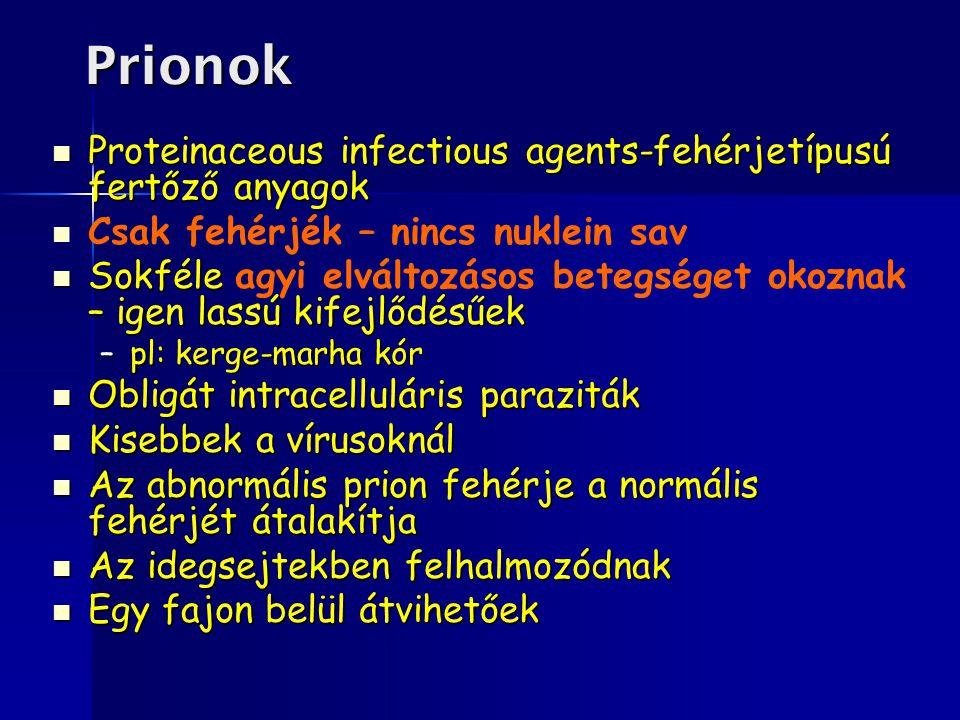 Prionok Proteinaceous infectious agents-fehérjetípusú fertőző anyagok Proteinaceous infectious agents-fehérjetípusú fertőző anyagok Csak fehérjék – ni