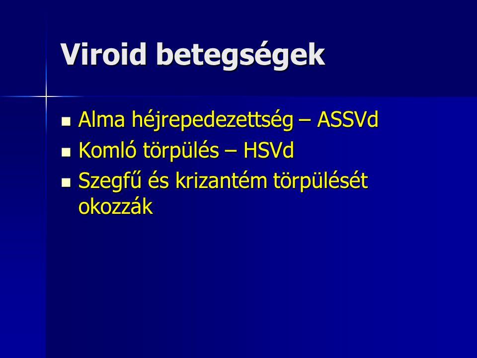 Viroid betegségek Alma héjrepedezettség – ASSVd Alma héjrepedezettség – ASSVd Komló törpülés – HSVd Komló törpülés – HSVd Szegfű és krizantém törpülés