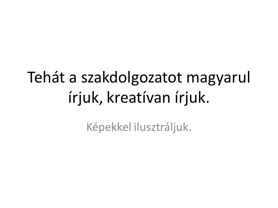 Tehát a szakdolgozatot magyarul írjuk, kreatívan írjuk. Képekkel ilusztráljuk.