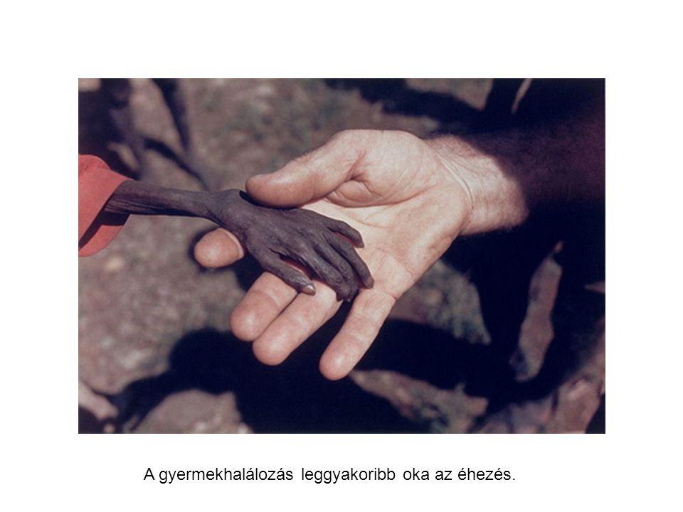 A gyermekhalálozás leggyakoribb oka az éhezés.