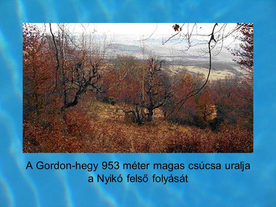 A Gordon-hegy 953 méter magas csúcsa uralja a Nyikó felső folyását