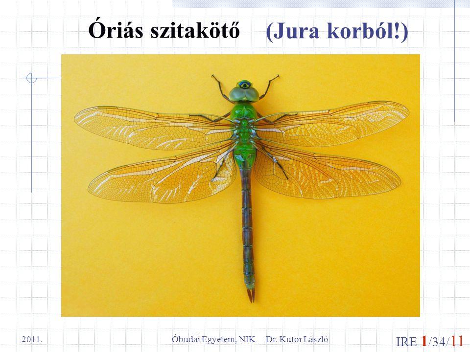 IRE 1 /34/ 11 Óbudai Egyetem, NIK Dr. Kutor László 2011. Óriás szitakötő (Jura korból!)