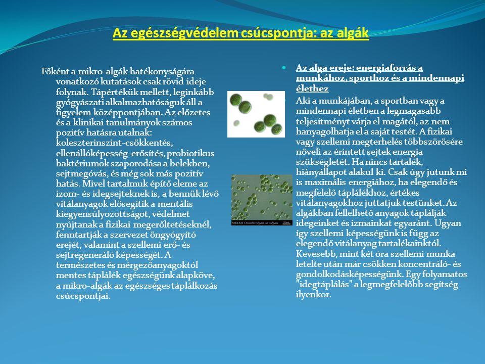 Az egészségvédelem csúcspontja: az algák Főként a mikro-algák hatékonyságára vonatkozó kutatások csak rövid ideje folynak.