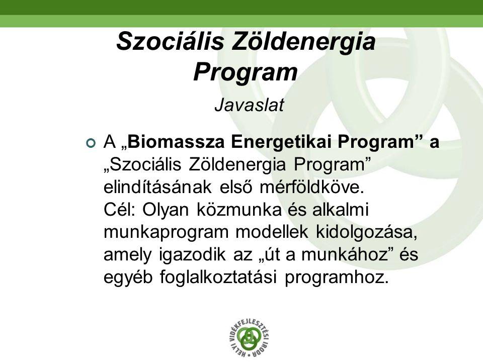 """Szociális Zöldenergia Program Javaslat A """"Biomassza Energetikai Program"""" a """"Szociális Zöldenergia Program"""" elindításának első mérföldköve. Cél: Olyan"""