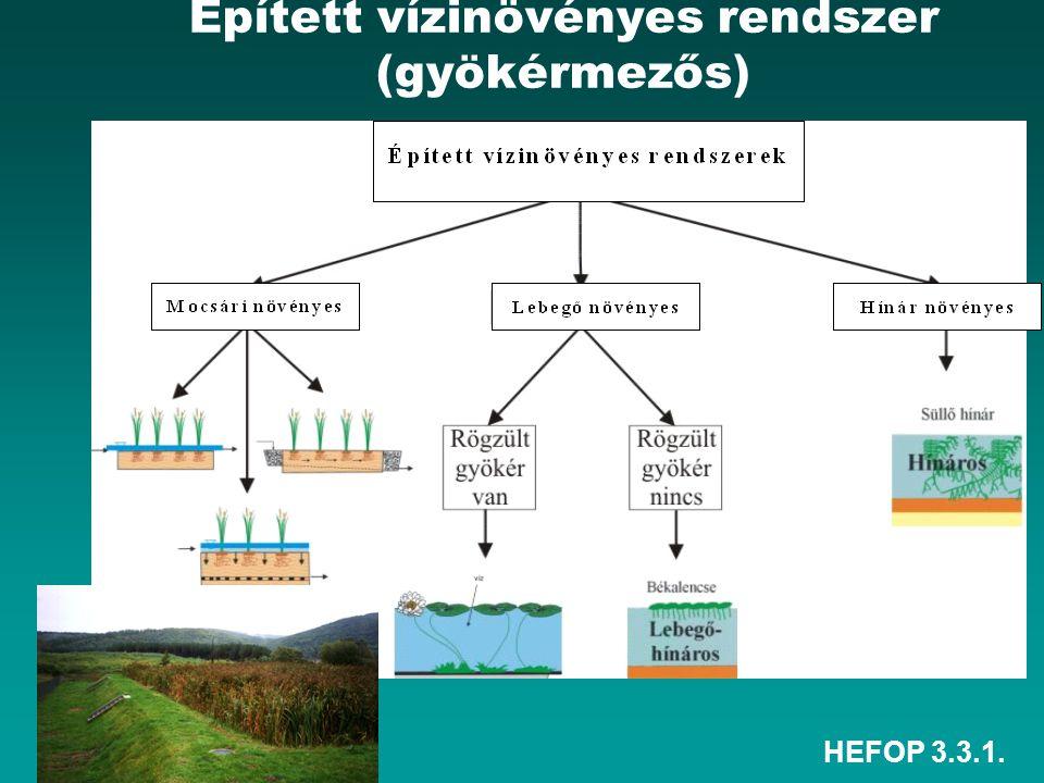 HEFOP 3.3.1. Épített vízinövényes rendszer (gyökérmezős)