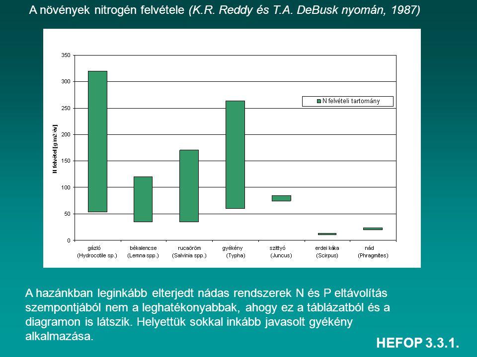 HEFOP 3.3.1. A növények nitrogén felvétele (K.R. Reddy és T.A. DeBusk nyomán, 1987) A hazánkban leginkább elterjedt nádas rendszerek N és P eltávolítá