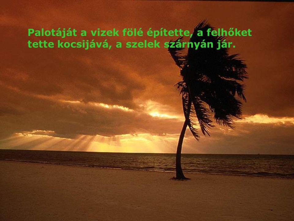 Áldjad, lelkem, az Urat! Uram, Istenem, igen nagy vagy, fenségbe és méltóságba öltöztél. Világosságot vettél magadra, mint egy köpenyt. Ő az, aki sáto