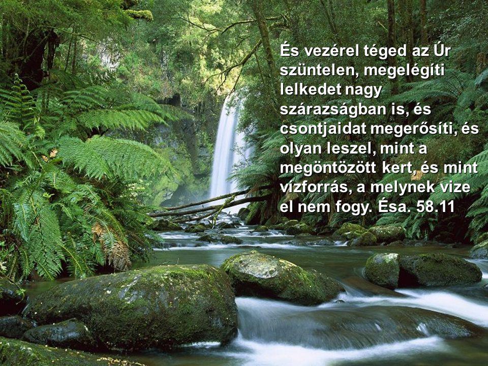Sőt az Úr, a dicsőséges lesz ott nékünk folyók és széles vizek gyanánt, amelyekbe nem jő evezős hajó, és nehéz gálya rajtuk át nem megy. Ésa. 33.21