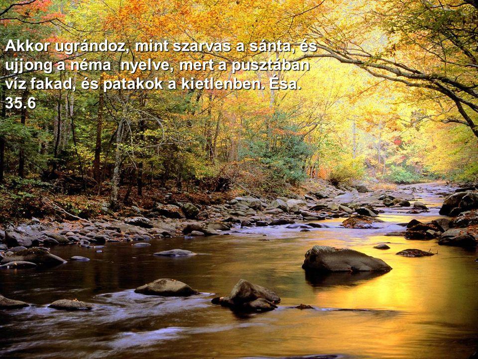 És ímé, Izráel Istenének dicsősége jő napkelet felől, és zúgása, mint nagy víz zúgása, és a föld világos volt az ő dicsőségétől. Ezék. 43.2