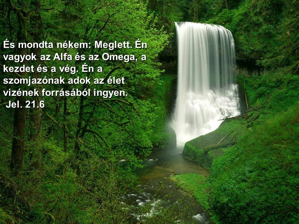 És megmutatta nékem az élet vizének tiszta folyóját, amely ragyogó volt, mint a kristály, az Istennek és a Báránynak királyiszékéből jővén ki (Jel. 22