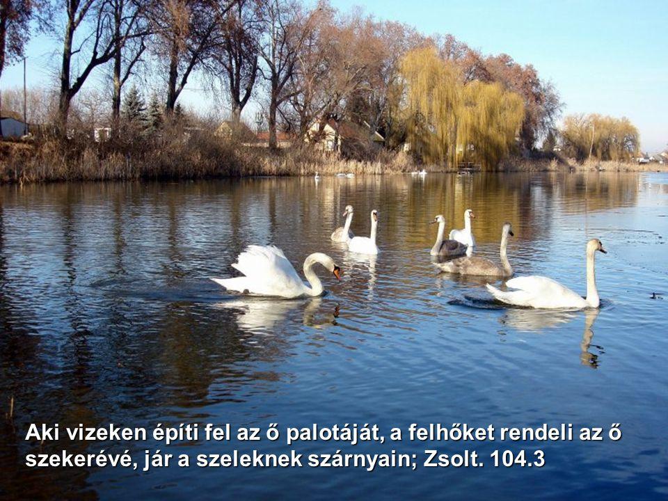 Händel: Vízi zene Az Úr szava zeng a vizek fölött, a dicsőség Istene mennydörög, az Úr ott van a nagy vizek felett. Zsolt. 29.3