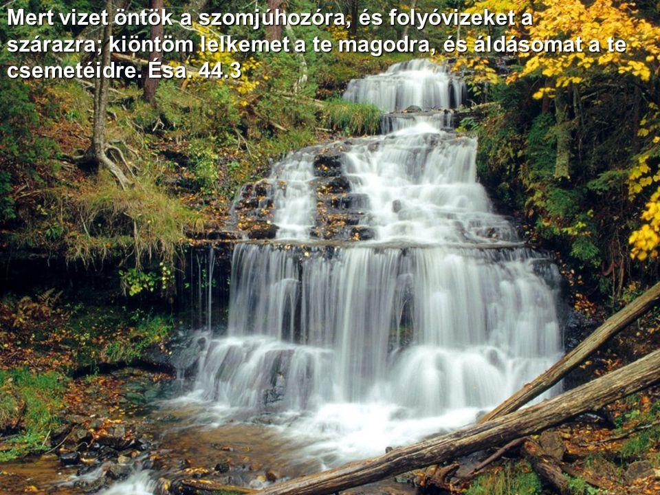 Kopasz hegyeken folyókat nyitok és a rónák közepén forrásokat; a pusztát vizek tavává teszem és az aszú földet vizeknek forrásaivá. Ésa. 41.18