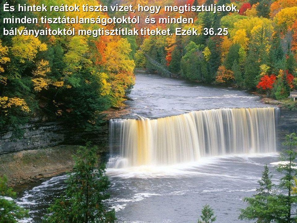És hintek reátok tiszta vizet, hogy megtisztuljatok, minden tisztátalanságotoktól és minden bálványaitoktól megtisztítlak titeket.