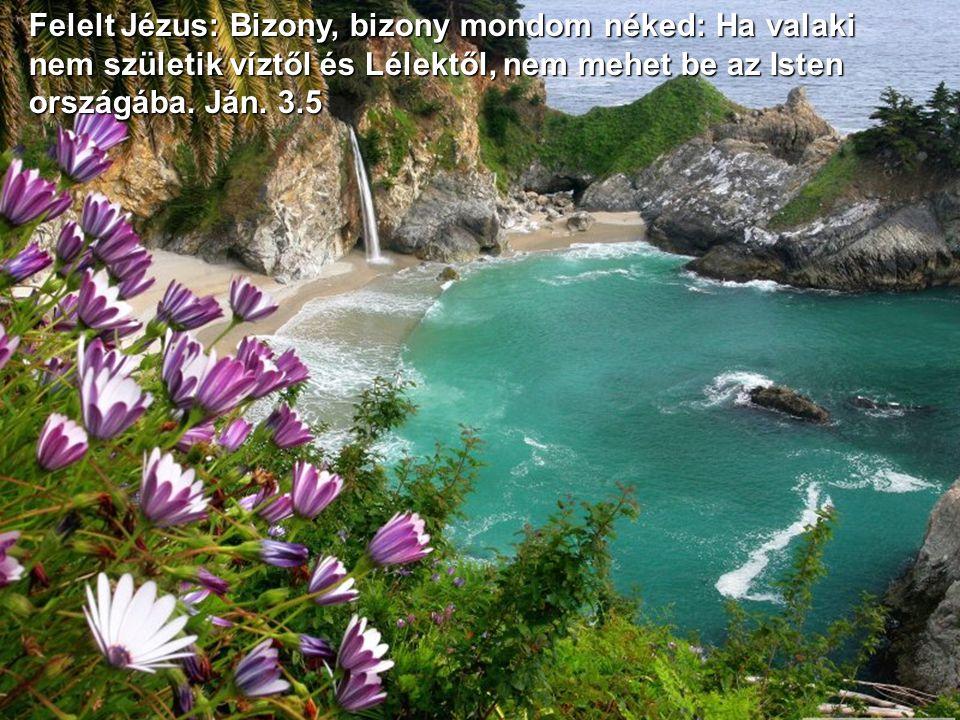 Felelt Jézus: Bizony, bizony mondom néked: Ha valaki nem születik víztől és Lélektől, nem mehet be az Isten országába.