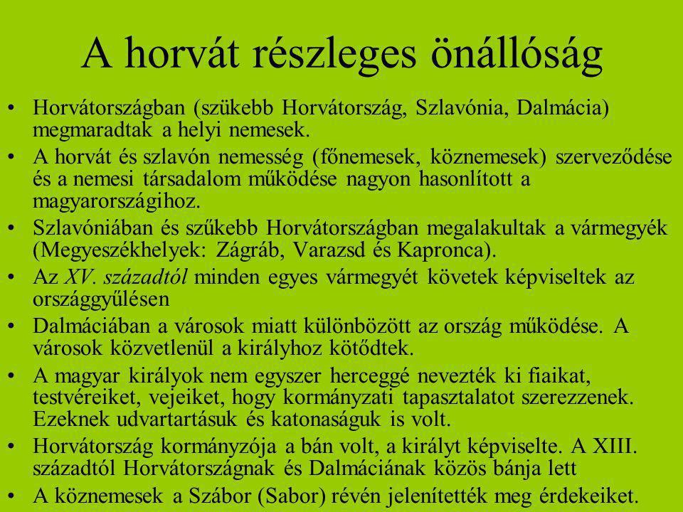 A horvát részleges önállóság Horvátországban (szükebb Horvátország, Szlavónia, Dalmácia) megmaradtak a helyi nemesek. A horvát és szlavón nemesség (fő