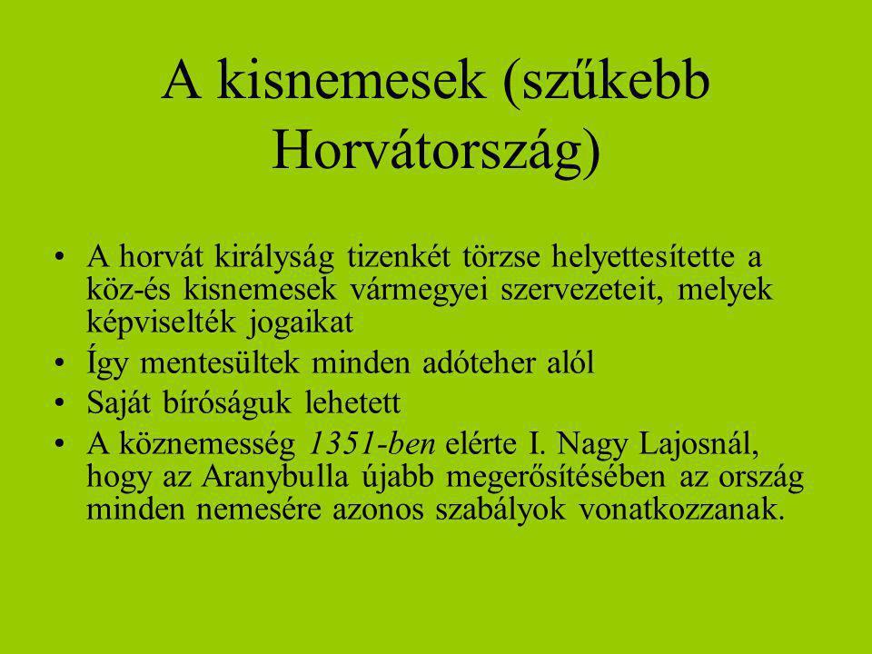 A kisnemesek (szűkebb Horvátország) A horvát királyság tizenkét törzse helyettesítette a köz-és kisnemesek vármegyei szervezeteit, melyek képviselték