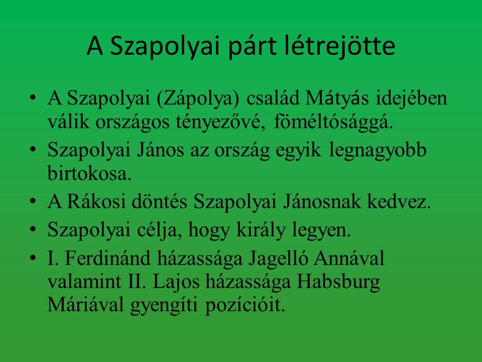 A Szapolyai párt létrejötte A Szapolyai (Zápolya) család M á ty á s idejében válik országos tényezővé, föméltósággá. Szapolyai János az ország egyik l