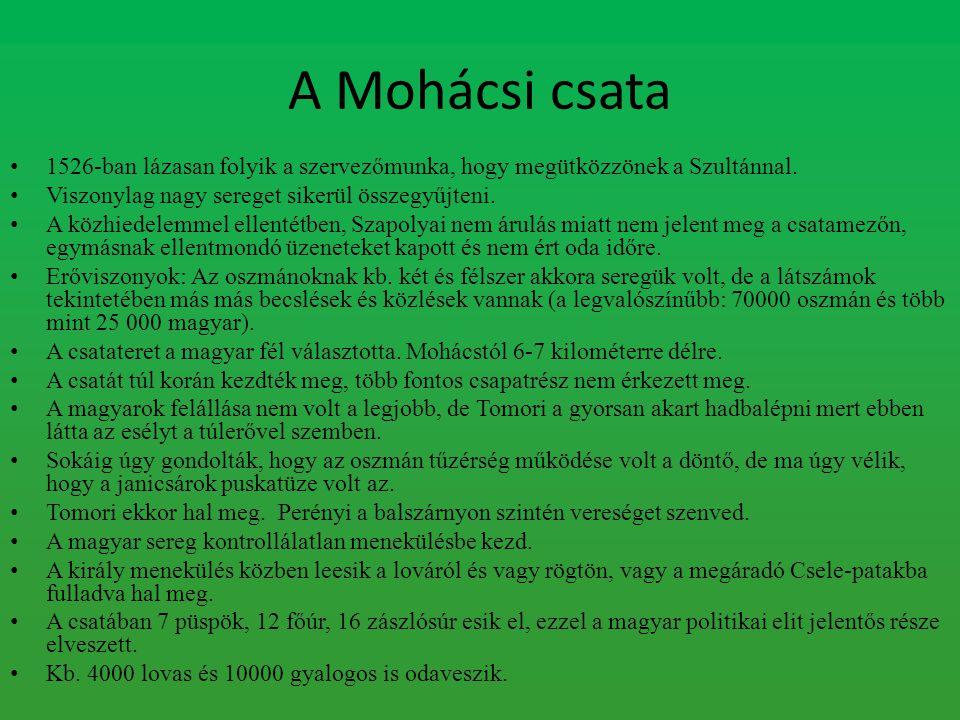 Mohács következményei A mohácsi vész talán a magyar történelem egyik legnagyobb fordulópontja, azonban önmagában nem az.