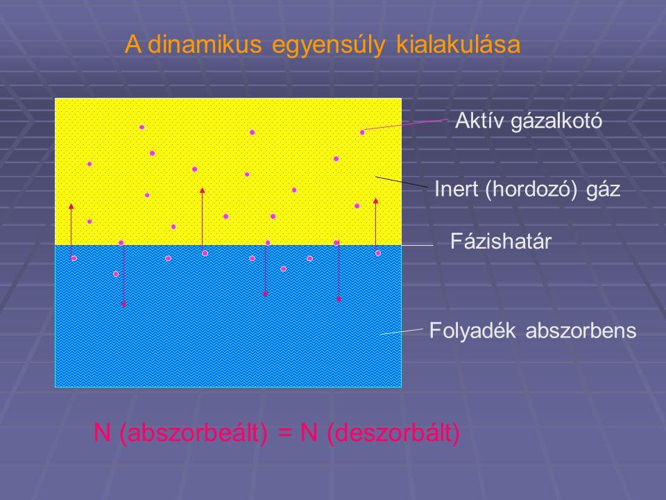 Aktív gázalkotó Inert (hordozó) gáz Folyadék abszorbens Fázishatár A dinamikus egyensúly kialakulása N (abszorbeált) = N (deszorbált)