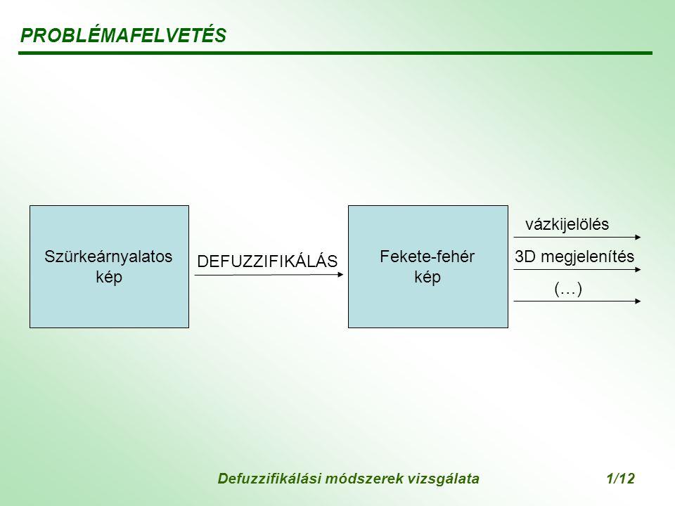 Defuzzifikálási módszerek vizsgálata1/12 PROBLÉMAFELVETÉS Fekete-fehér kép DEFUZZIFIKÁLÁS vázkijelölés 3D megjelenítés (…) Szürkeárnyalatos kép