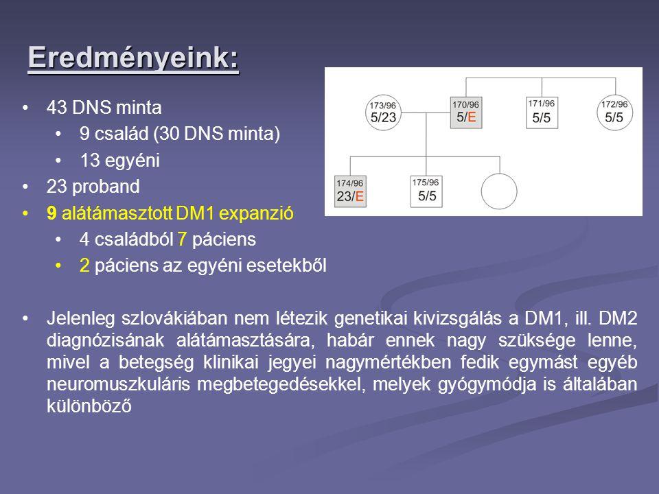 Eredményeink: 43 DNS minta 9 család (30 DNS minta) 13 egyéni 23 proband 9 alátámasztott DM1 expanzió 4 családból 7 páciens 2 páciens az egyéni esetekb
