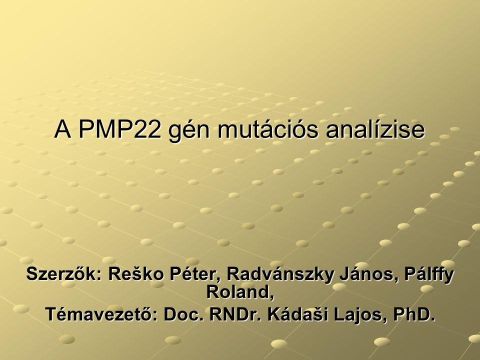 A PMP22 gén mutációs analízise Szerzők: Reško Péter, Radvánszky János, Pálffy Roland, Témavezető: Doc. RNDr. Kádaši Lajos, PhD.