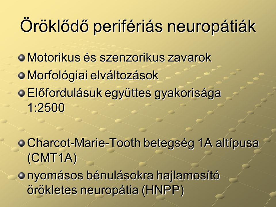 Öröklődő perifériás neuropátiák Motorikus és szenzorikus zavarok Morfológiai elváltozások Előfordulásuk együttes gyakorisága 1:2500 Charcot-Marie-Toot